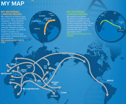 My Ancestral Journey (National Geographic's Genographic Project)